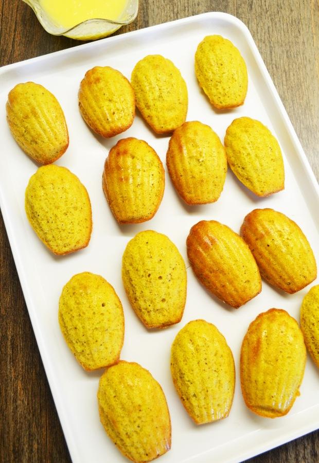 madeleines1