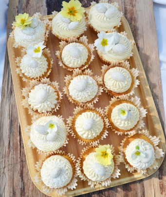 cupcakes30