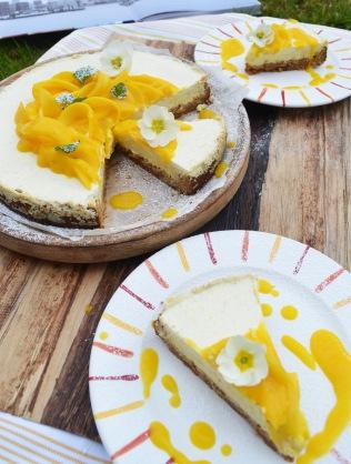 cheese17