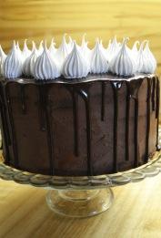 torte14