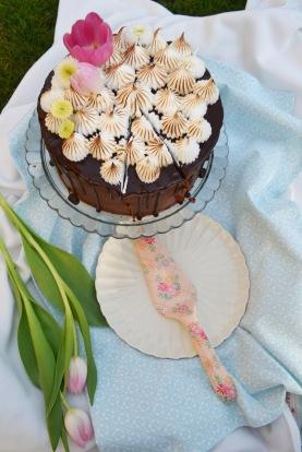 torte17