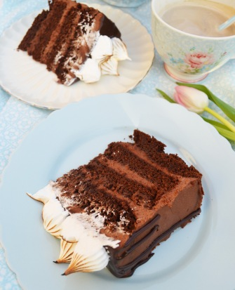 torte22