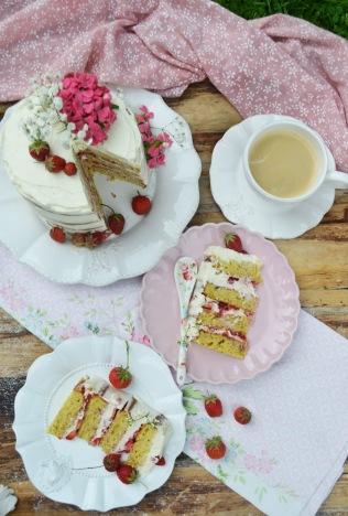 torte50